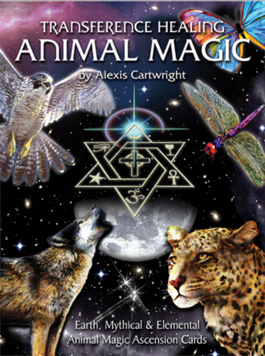 animal-magic